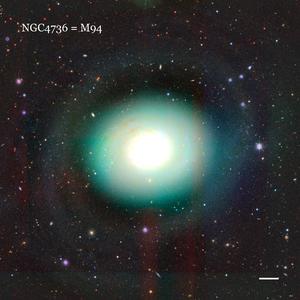 NGC4736 = M94