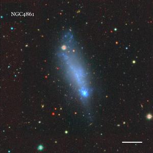 NGC4861