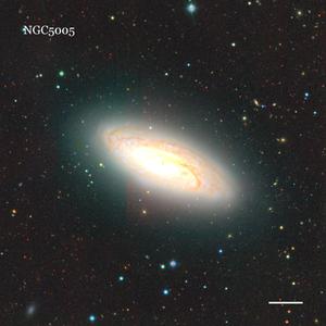 NGC5005