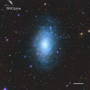 NGC5204